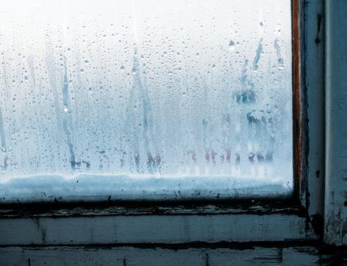 Common Problems with Weak Window Frames Near Lexington, KY